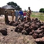 HFA_Site_Burkina_93881
