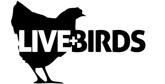livebirds-logo